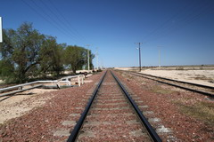 Lanscape image of two parallel sets of railway tracks extending to the horizon. Overhead lines run either side of the tracks. The horizon ends in clear blue sky. Several green trees are visible beside the tracks on the the left of the image.