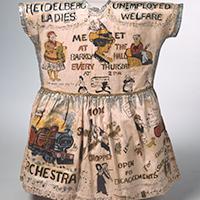 a girl's fancy dress costume