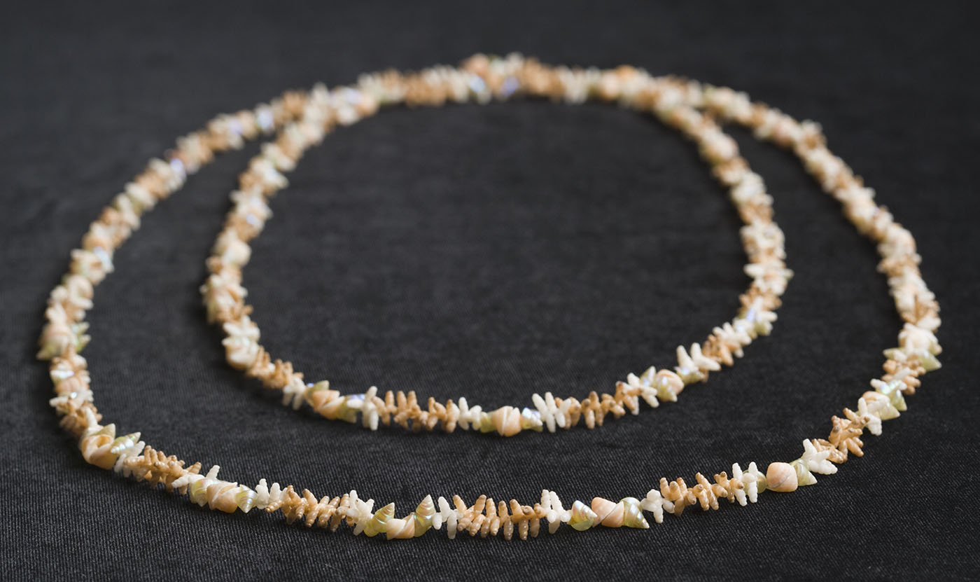 A necklace made from sea shells. There are three different types of shells in the necklace.