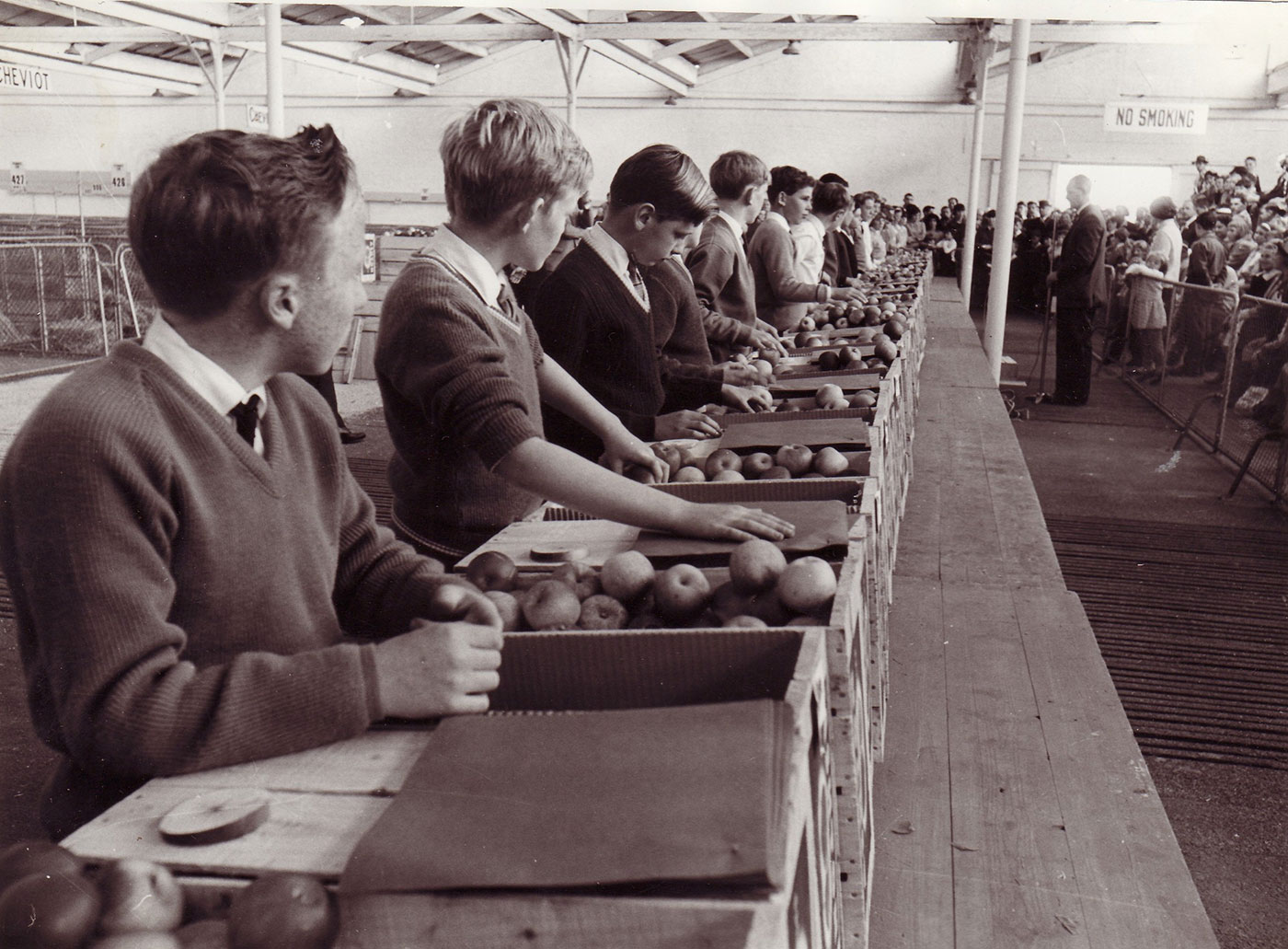 Row of school boys standing at a table with crates of apples on top. - click to view larger image