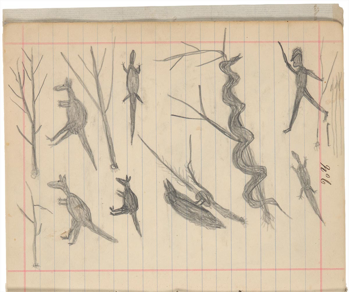 Sketchbook drawings of animals, including kangaroos, lizards and a long snake, with a human figure in the top right. - click to view larger image
