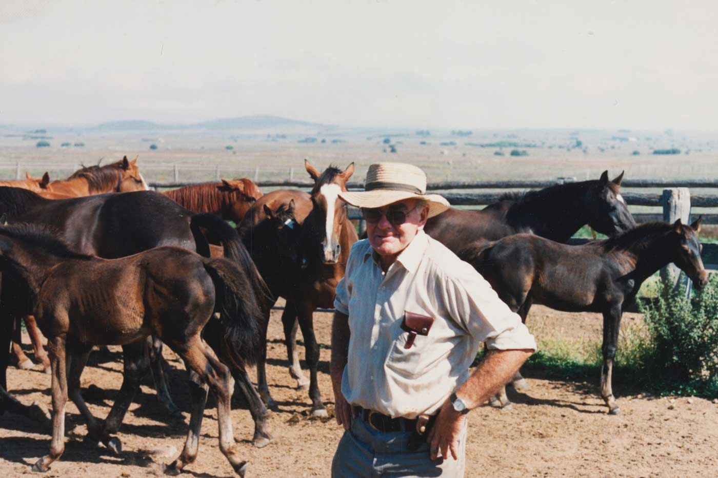 Neale with mares and foals at his Strathallan property in the 1980s - click to view larger image