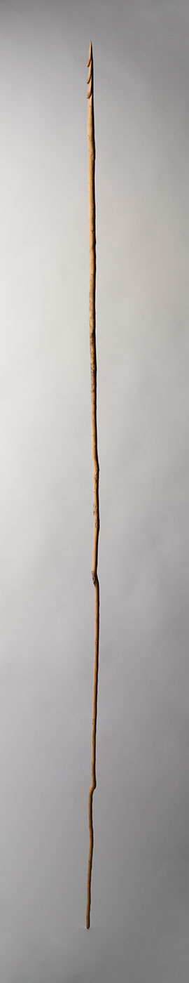 Wooden spears collected at Papunya in 1972. - click to view larger image