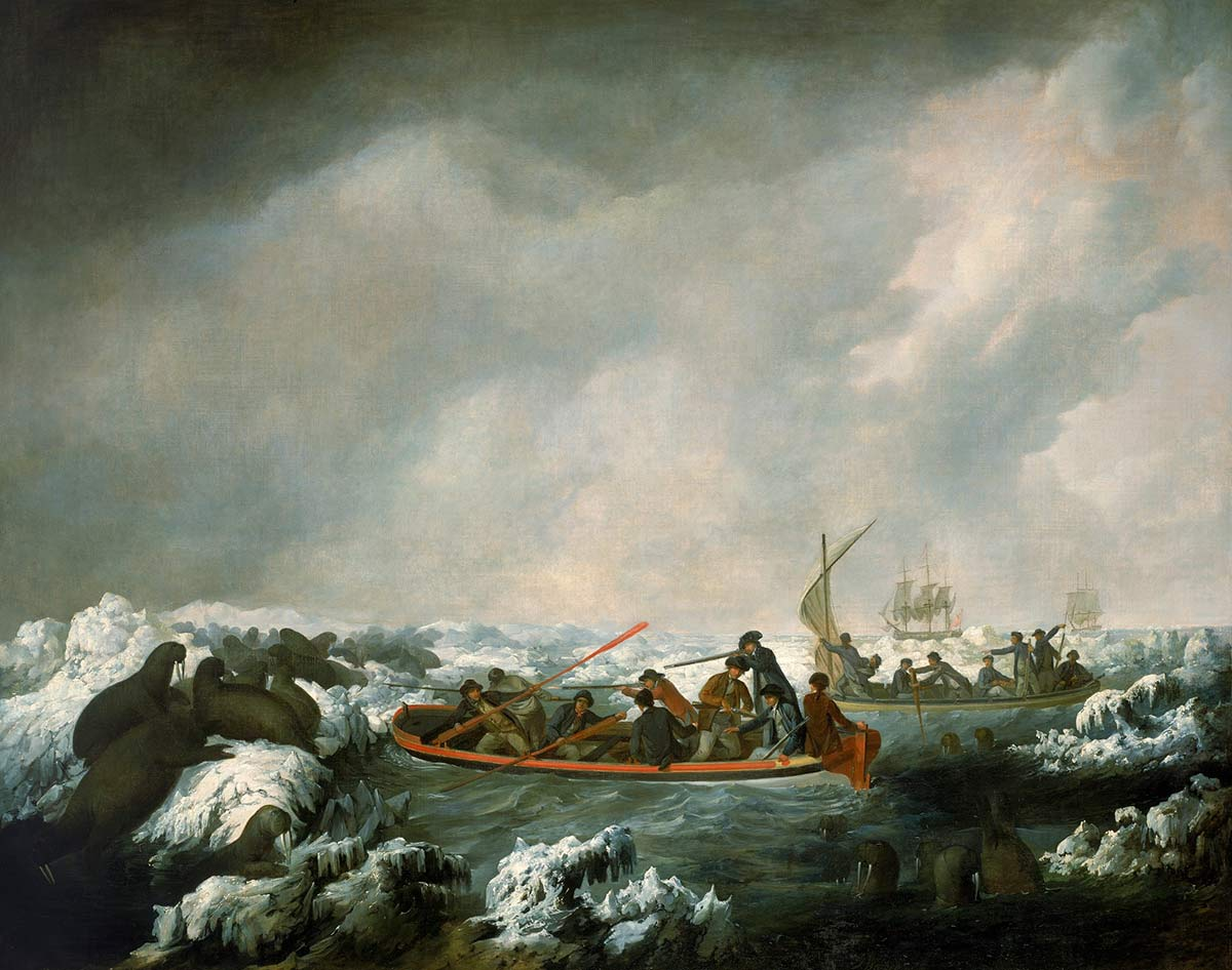 A painting depicting a group of boats (and ships in the background) filled with men armed with oars and guns surrounded by walruses. - click to view larger image