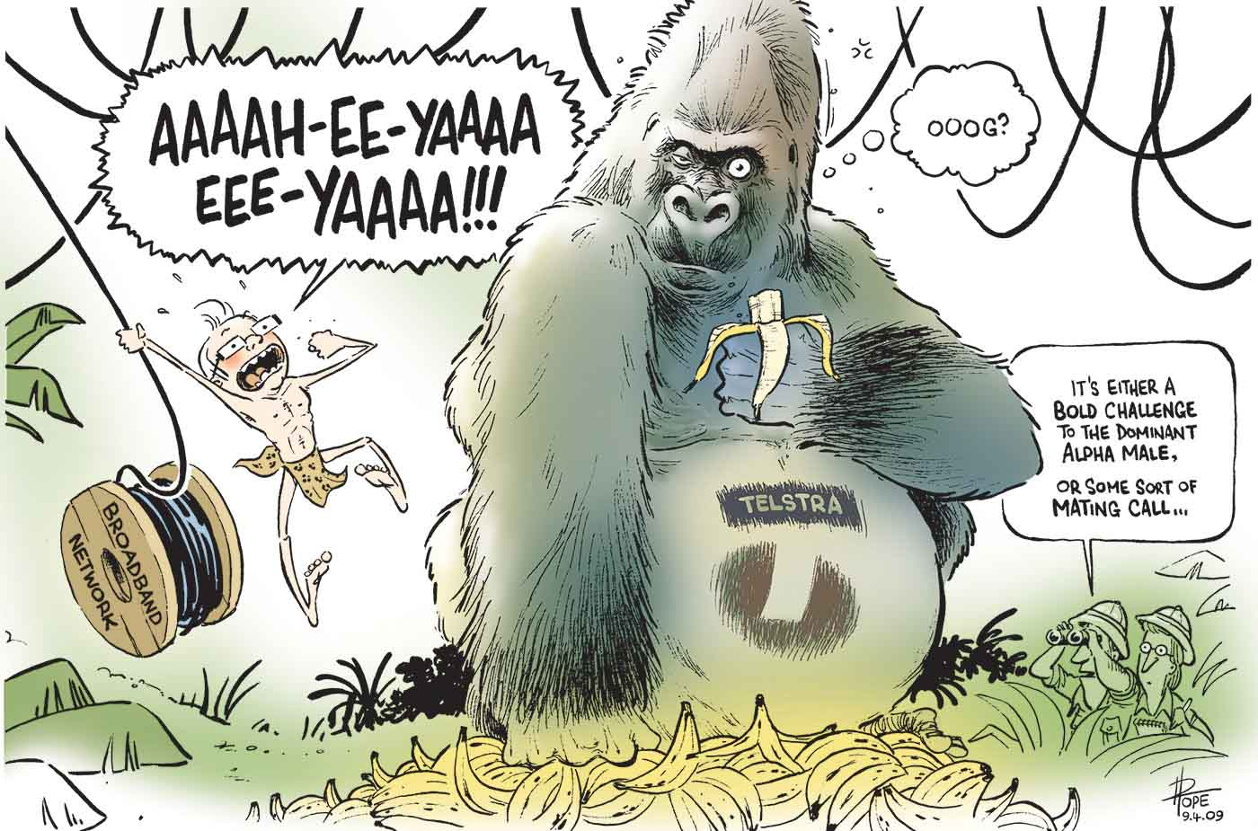 "A colour cartoon depicting Kevin Rudd as Tarzan. He is swinging in from the left side of the image, holding onto some cable that is paying out from a wooden roll marked 'Broadband Network'. Mr Rudd is calling out 'Aaaah-ee-yaaaa eee-yaaaa!!!' as he swings. In the centre of the image sits a large gorilla with the Telstra logo on its belly. It is eating a banana and appears to be non-plussed by the swinging figure. A thought bubble appears to the right of the gorilla's head. In the bubble is written 'Ooog?"". A large pile of bananas lies on the ground in front of the gorilla. To the right of the image, in some jungle undergrowth, are two men in explorer clothes. One observes the gorilla and Mr Rudd through binoculars and is saying 'It's either a bold challenge to the dominant alpha male, or some sort of mating call ...'.  - click to view larger image"