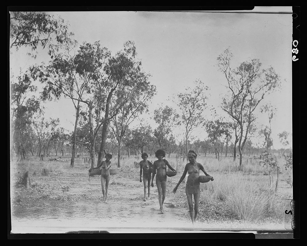 A black and white photograph of three young Australian Indigenous women walking toward the camera carrying solid oblong containers slung over one shoulder with a string rope. The woman at the front of the group is wearing a cloth headband and a string skirt; the others are naked. They are walking over flat ground dotted with trees and clumps of tall grass - click to view larger image