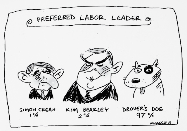 A cartoon titled 'Preferred Labor Leader', with three figures, their names and a percentage. Simon Crean, 1%. Kim Beazley, 2%. A drover's dog, 97%. - click to view larger image