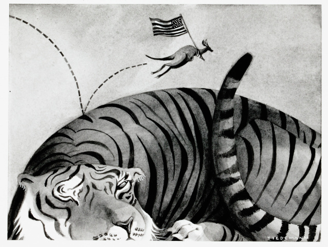 A cartoon of a tiny kangaroo carrying an American flag jumping along a sleeping tiger's back. - click to view larger image