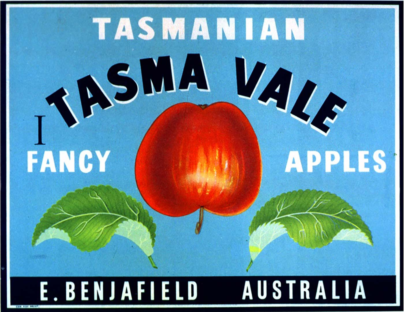A label that has an image of an apple. Text reads: 'Tasmanian Fancy Apples. Tasma Vale. E. Benjafield. Australia'.
