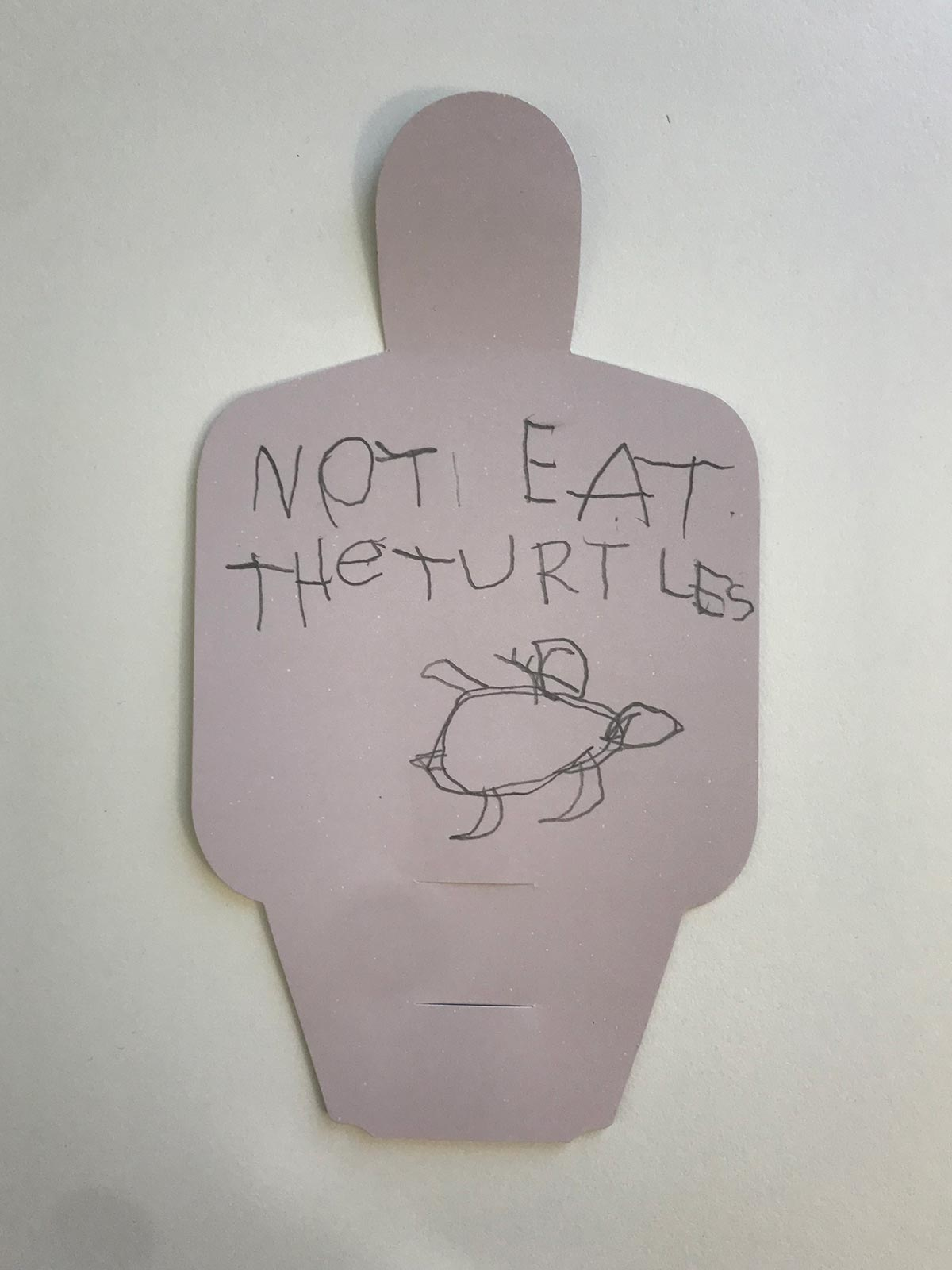 Paper figure with hand written text and a drawing of a turtle. - click to view larger image