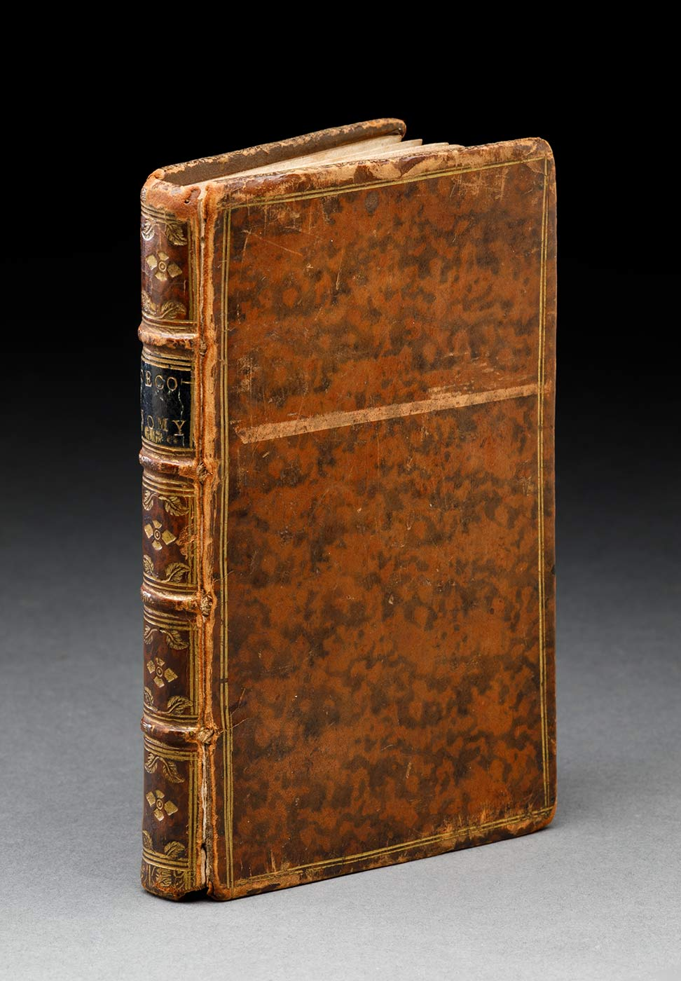 Closed book with a brown mottled leather cover with a gold border. The front hinge is cracked and the top of the front cover is scuffed.  - click to view larger image
