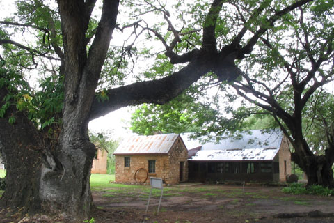 Image of farm homestead, framed by large trees
