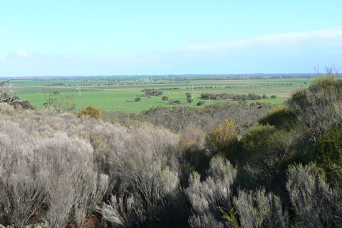 Keith district farmland viewed from Mount Monster, with scrub in the foregrourd and green plains beyond