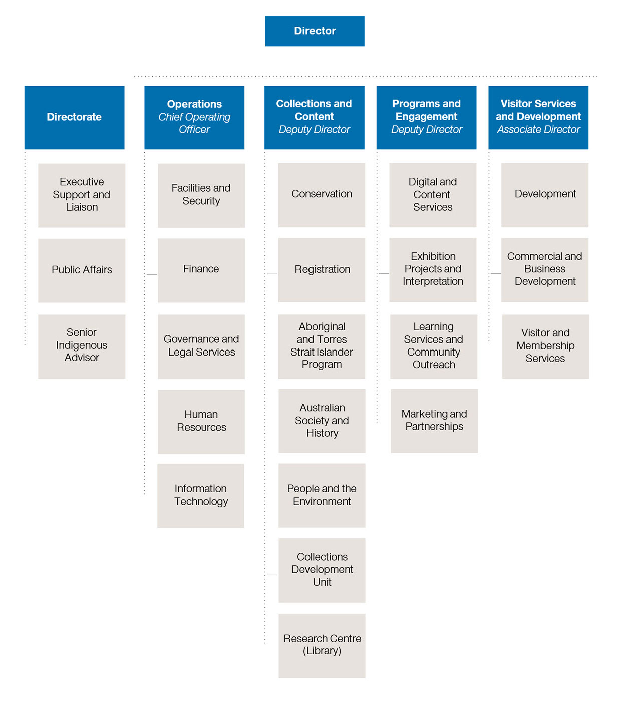 Organisational chart showing 'Director' at top, with five cascading groups underneath (from left): Directorate, Operations, Collections and Content, Programs and Engagement and Visitors Services and Development.