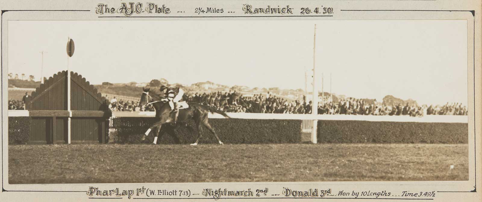 A black and white photo of Phar Lap winning the AJC Plate, 1930. - click to view larger image