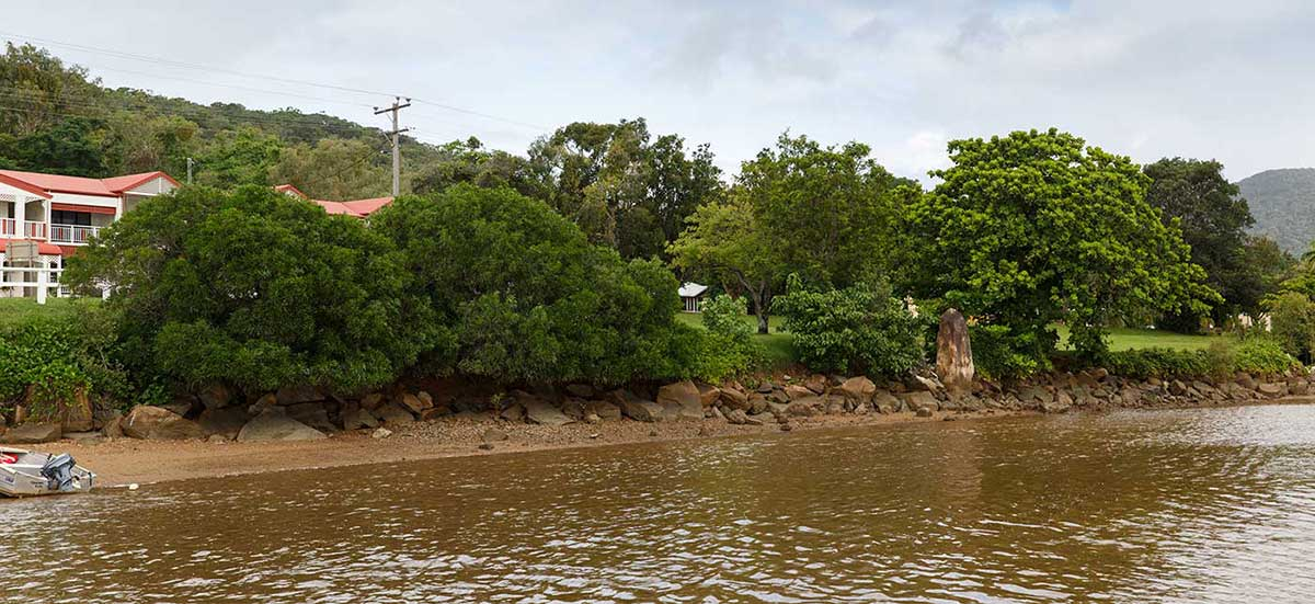 Colour photograph of a river bank. - click to view larger image