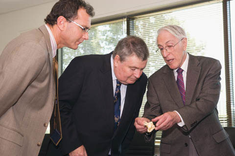 Mathew Trinca and Craddock Morton lean forward to look at a small bone being held by Graeme Clark.