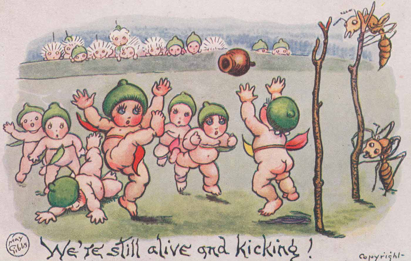 Post card featuring a sports match being played by semi-naked babies with gum nuts on their heads. - click to view larger image