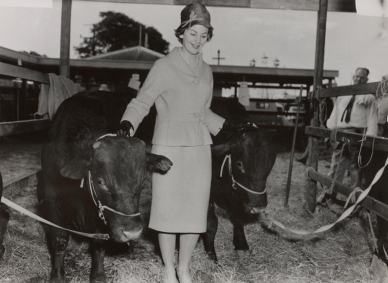 A black and white photo of Joan Stanbury with prize cattle.