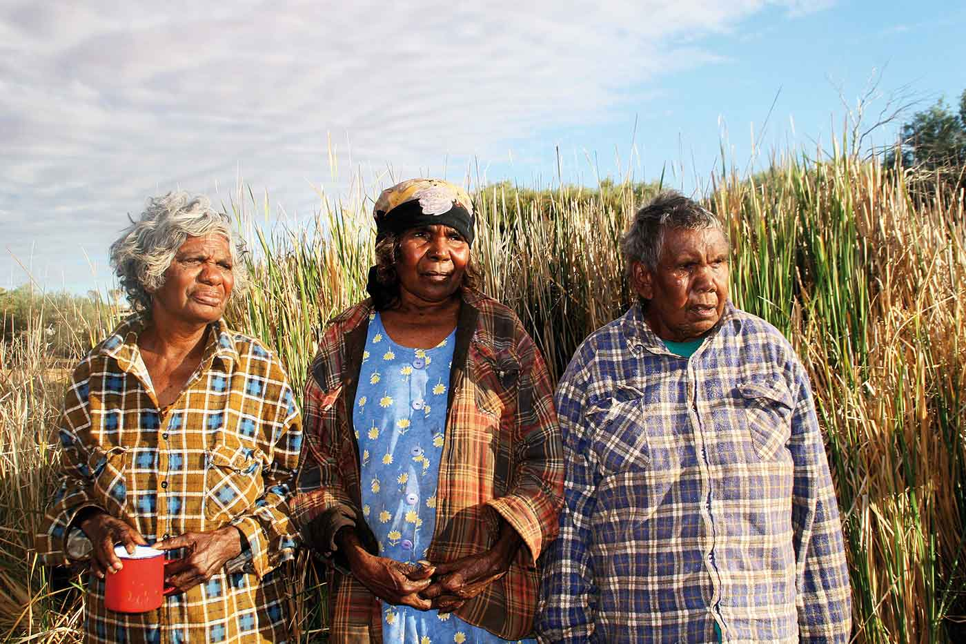 Colour photo of two women and one man standing in front of tall reeds.