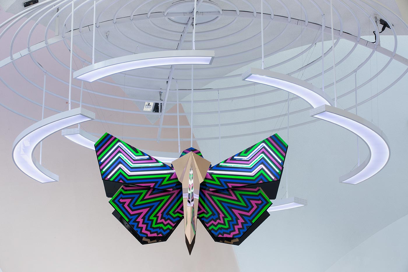 Multicoloured bogong moth sculpture hanging from the ceiling.