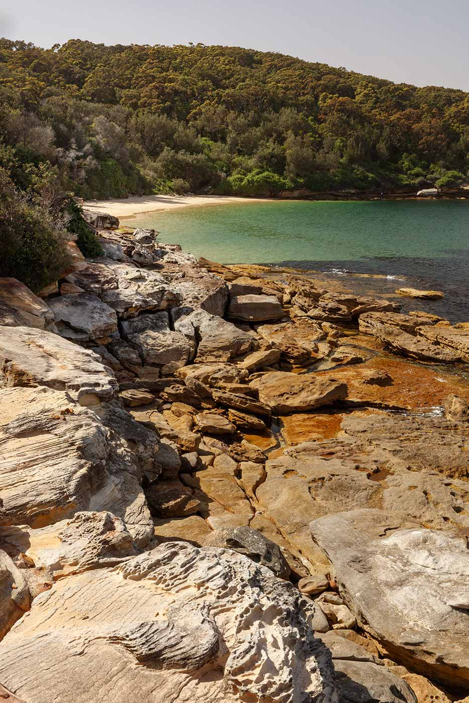 Colour photograph of beach cove featuring rocks and dense vegetation. - click to view larger image
