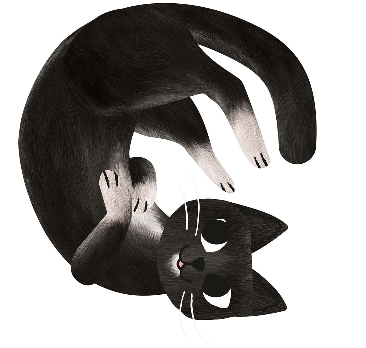 Digital illustration of a cat. - click to view larger image