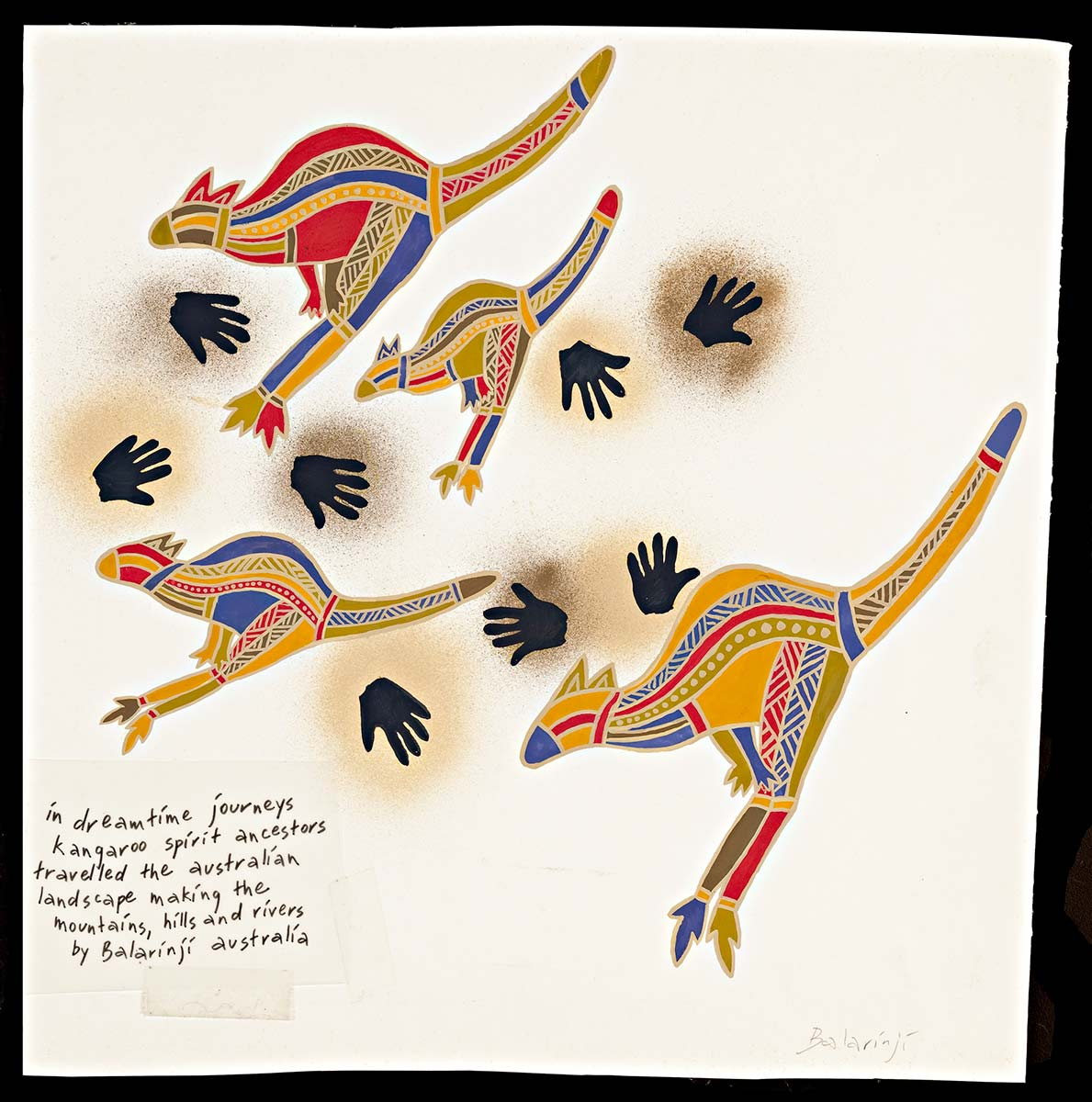 A gouache painting on paper. The design features four kangaroos of various sizes, facing left. Each kangaroo is multicoloured with red, blue, olive green, yellow ochre and brown in an X-ray style that is outlined in beige. There are several black handprints, each within dark ochre 'smudge'. In the lower left corner is a transparency of text taped on that reads 'in dreamtime journeys kangaroo spirit ancestors travelled ...'. The text 'Balarinji' is handwritten in pencil on the lower right hand corner of the art work. - click to view larger image