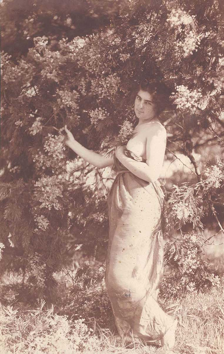 Photograph of a woman amidst a wattle shrub. - click to view larger image