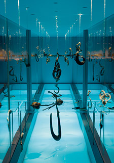 A variety of fishhooks within a display case that is illuminated with a blue light.