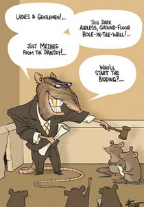 Cartoon of a real-estate agent rat with a gold tooth, auctioning off a dodgy hole-in-the-wall.