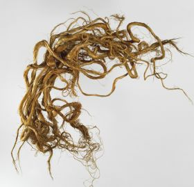 A bundle of twisted flax strands consisting of twelve individual strands.