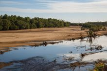 Colour photograph of a small, low river with sandy flats extending to a tree-lined bank.