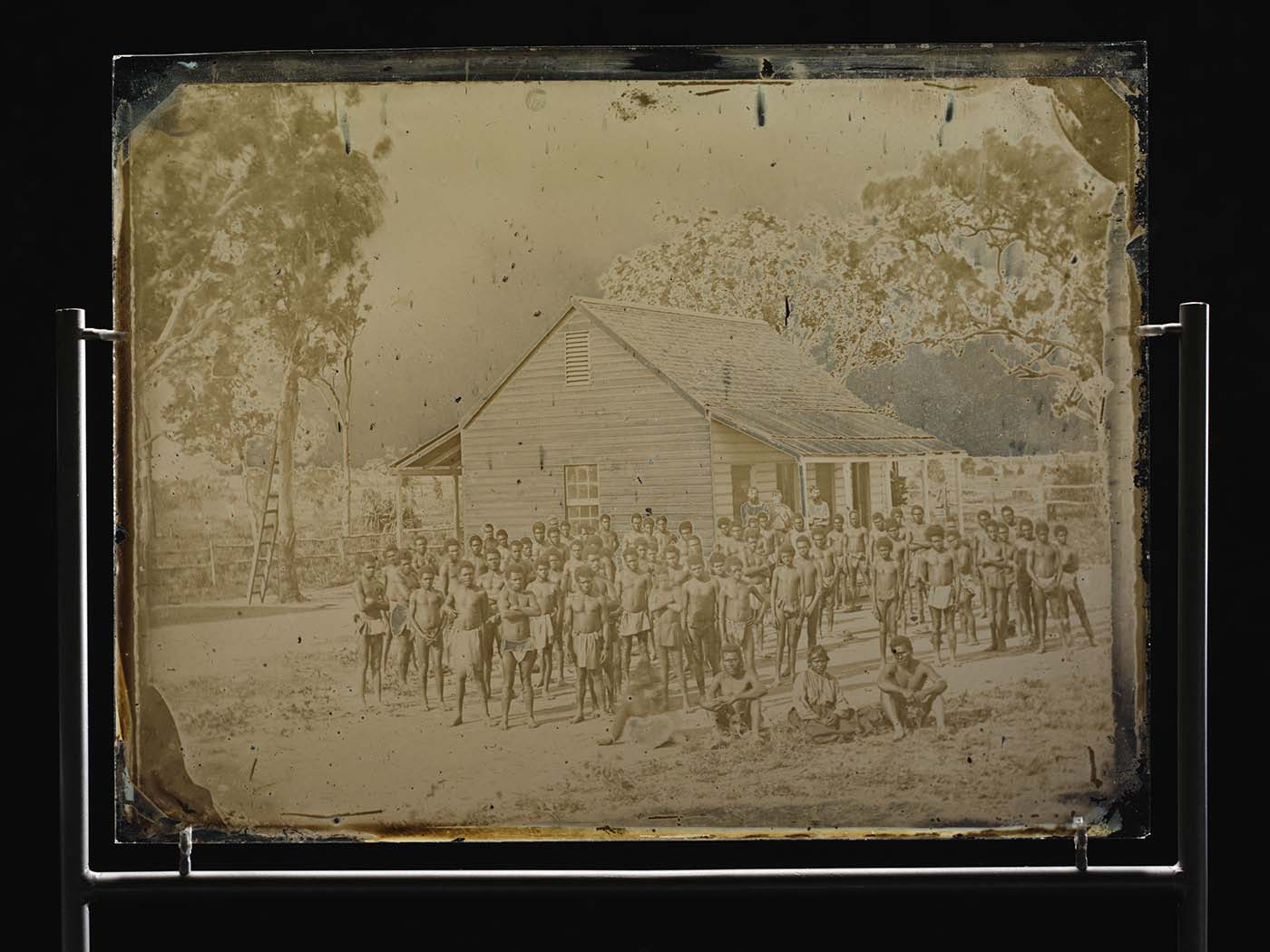 A large group of men, mainly wearing loin cloths, standing and sitting outside a small wooden building, with gum trees in the background. - click to view larger image