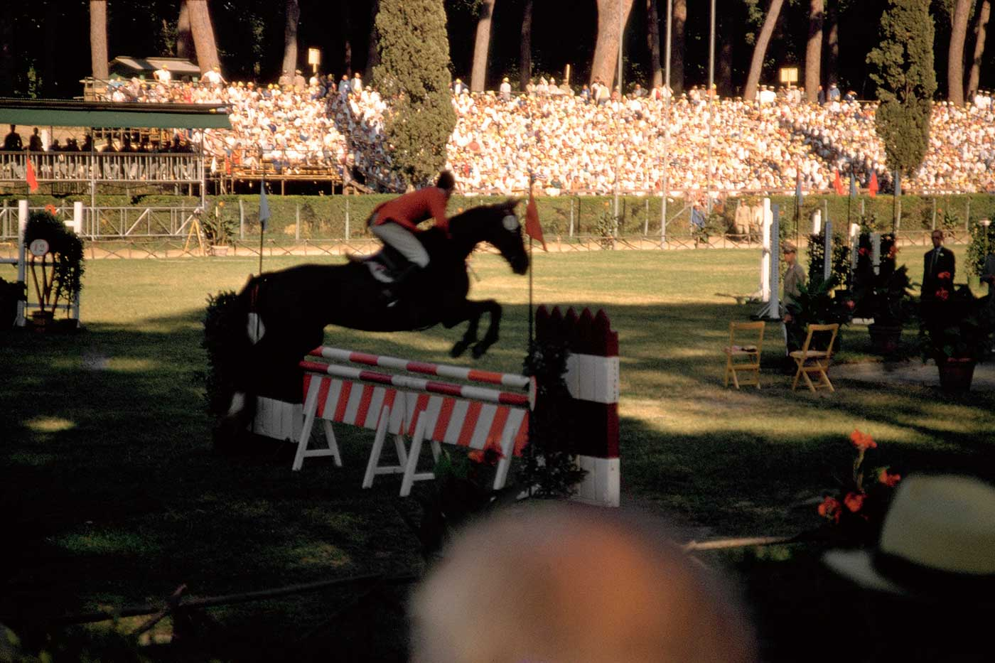 Neale and Mirrabooka get a clear round in the showjumping event at Rome Olympics, 1960. - click to view larger image