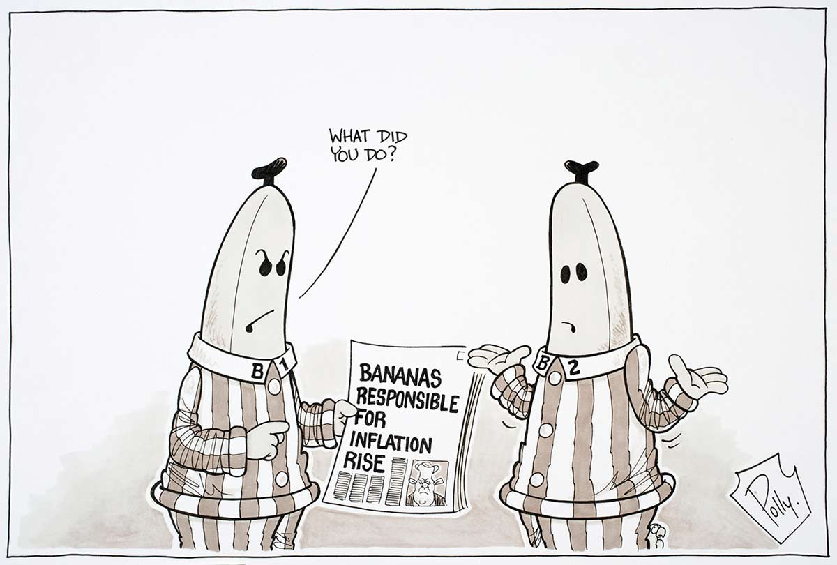 Cartoon of Bananas in Pyjamas characters B1 and B2 looking annoyed at reading a newspaper article about bananas being responsible for the inflation rise - click to view larger image