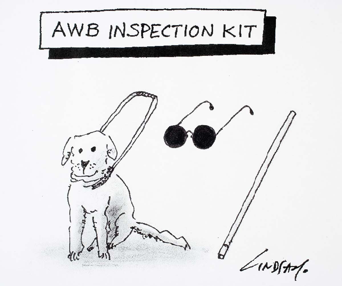 Cartoon of a seeing eye dog, a pair of sunglasses and a walking stick - click to view larger image