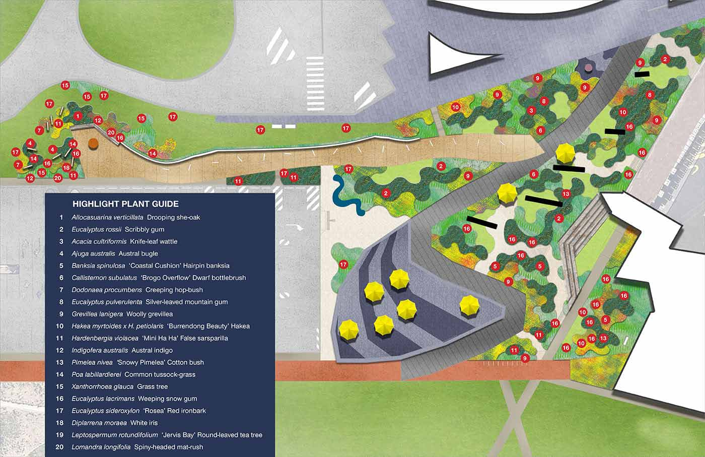 Map of Forecourt Garden showing plantings - click to view larger image