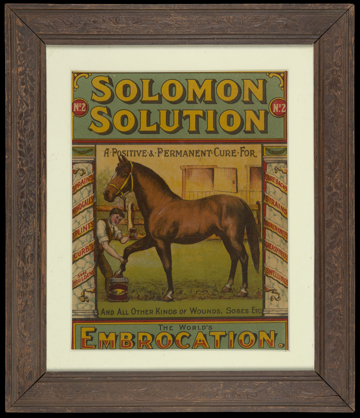 A framed poster with a man treating a horse's front leg. Text reads 'Solomon Solution, the worlds embrocation'.  - click to view larger image
