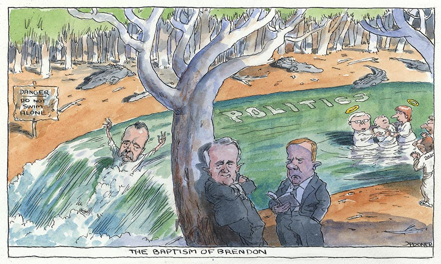 Brendan Nelson slips down a waterfall beside a sign which reads 'Danger: do not swim alone'. The stream is named 'Politics' and crocodiles lurk on the far bank. Malcolm Turnbull rests on a tree on the near bank with his arms crossed. Peter Costello stands beside him reading a book. Further up the stream, Kevin Rudd and Julia Gillard both sport haloes, and are about to baptise a man. They are watched by a man standing on the bank with '2020' on the back of his shirt. - click to view larger image