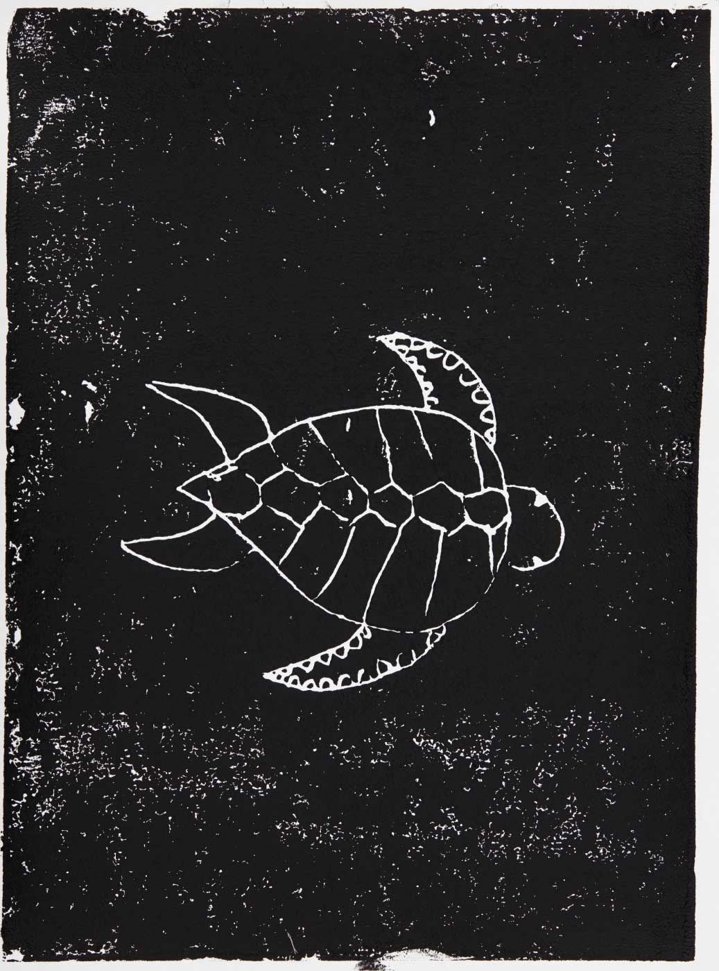 Print, black ink on white paper, depicting a turtle. Annotated in pencil 'Anishma'. - click to view larger image