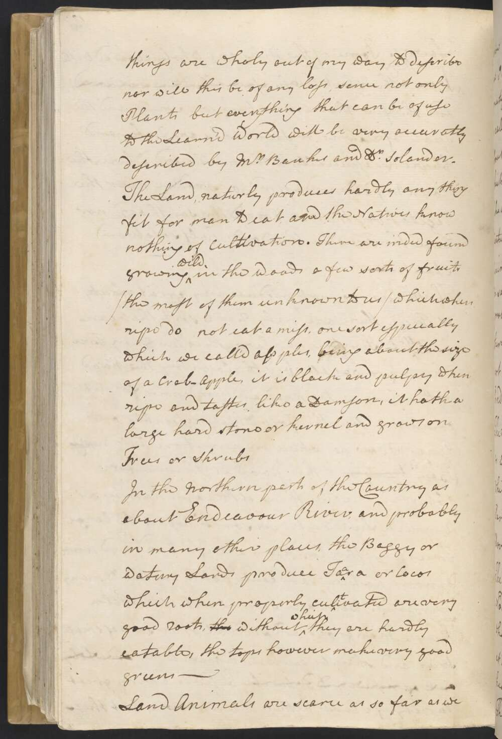 Handwritten journal entry by James Cook - click to view larger image