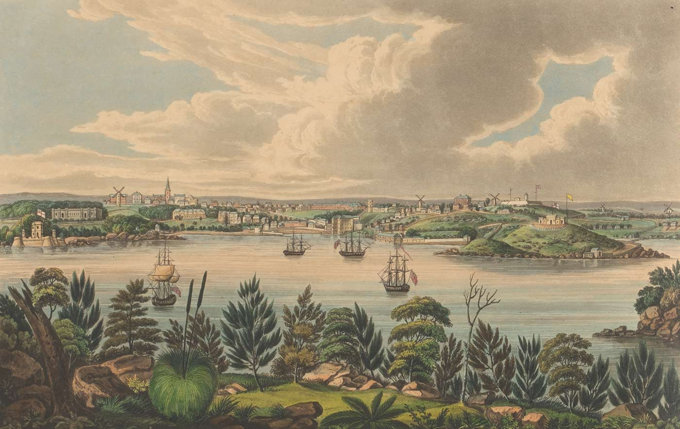 Coloured print of a view of a harbour with ships, a town in the distance, and natural landscape with various plant species in the foreground. There are low mountain ranges in the distance framed by a sky with billowing white clouds. - click to view larger image
