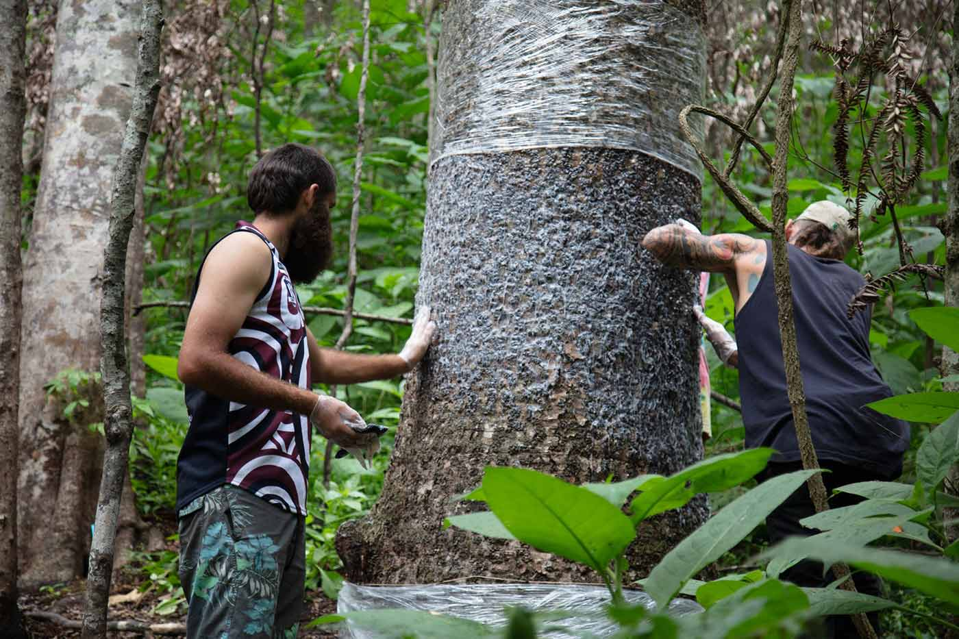 Two men applying a semi-transparent light fluid to a large tree trunk.