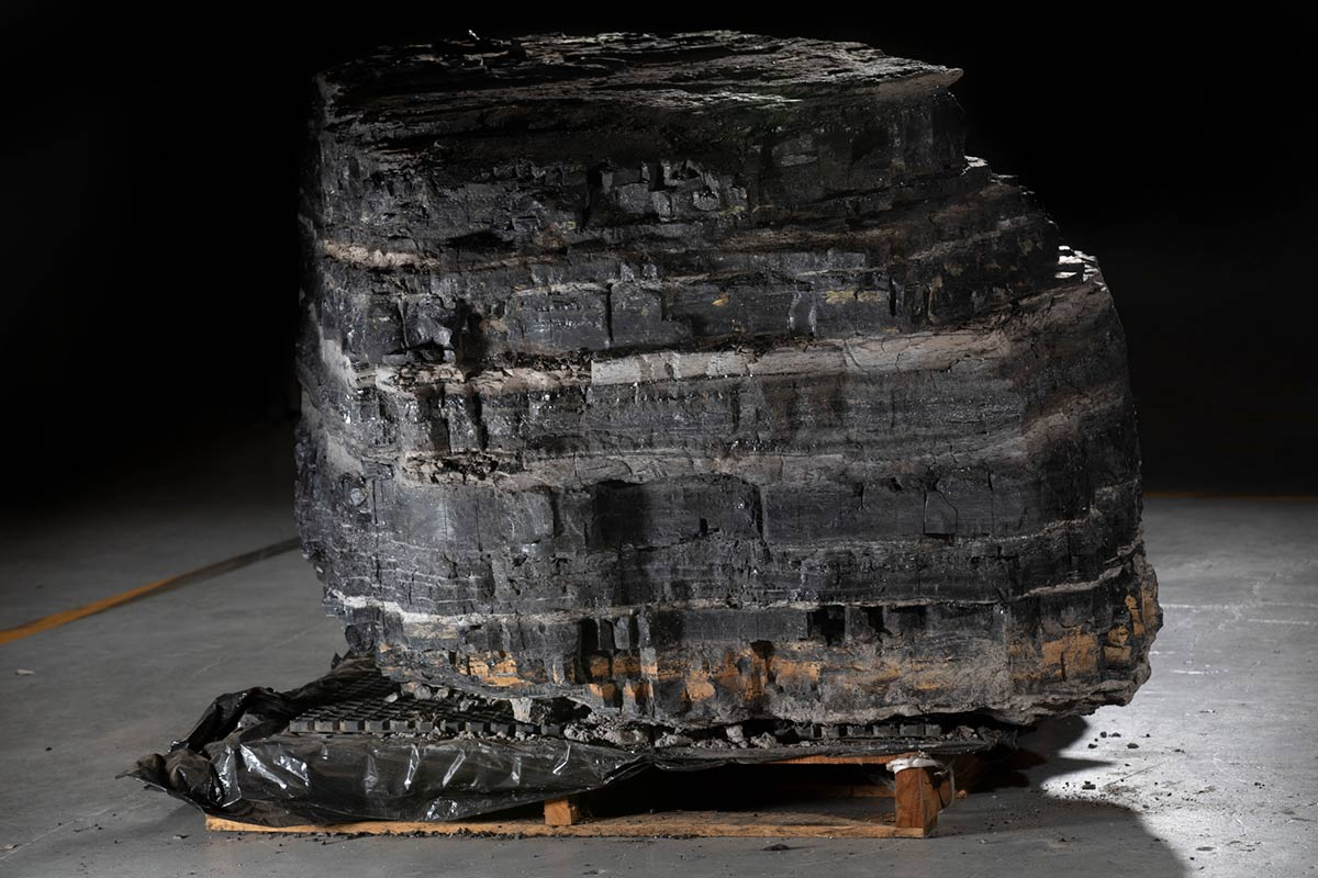 A large sample of coal featuring various shades of grey and black.