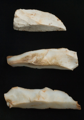 White cut stones (Chert flakes)