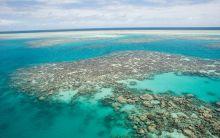 Reef near Ugar Island