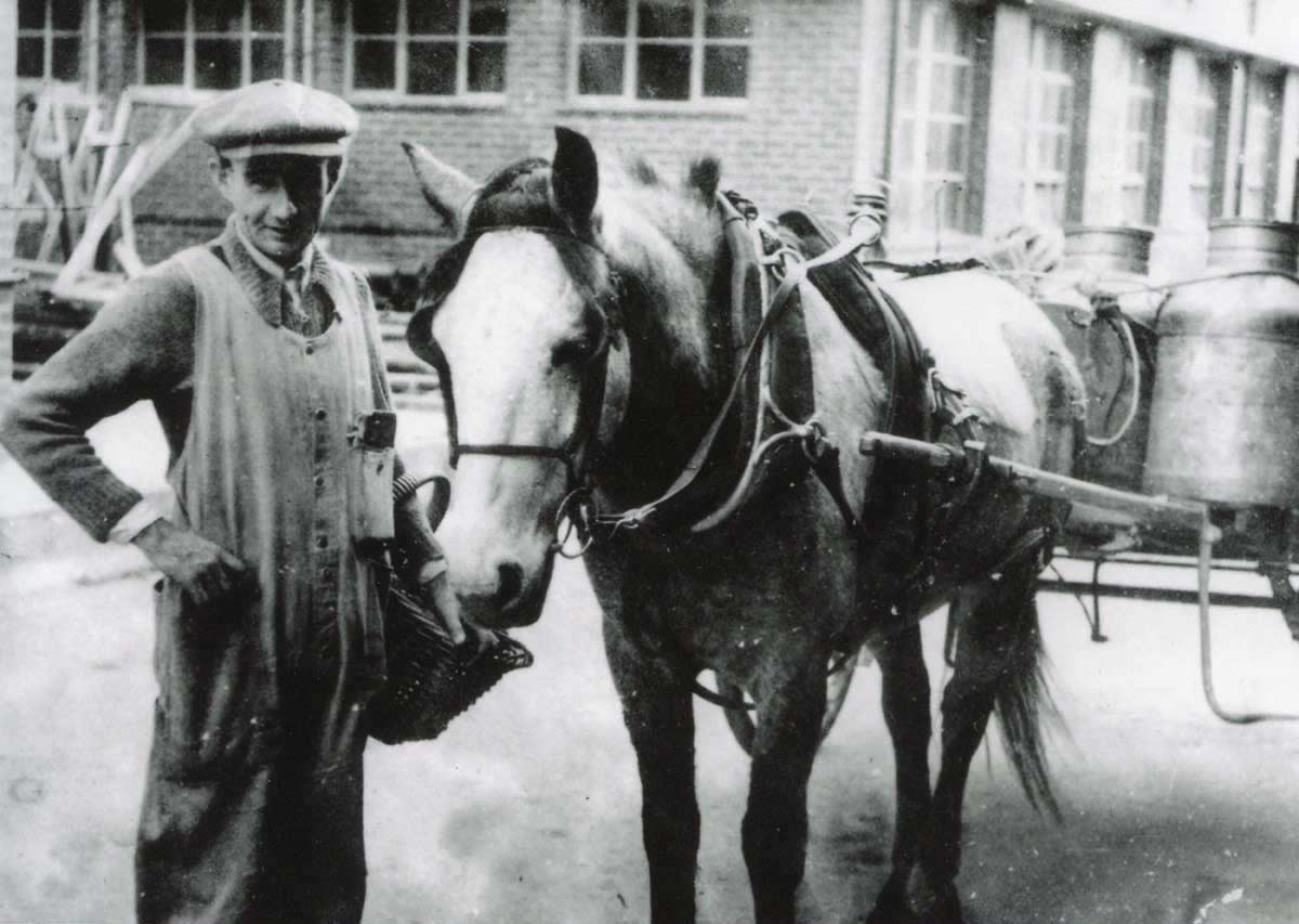 James Tighe with a milk delivery wagon. - click to view larger image
