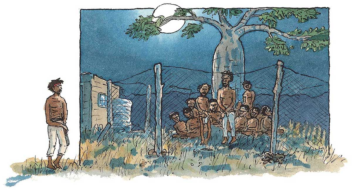 An illustration of a group of men behind a wire fence.  Jandamarra stands outside the fence, looking at the men. - click to view larger image