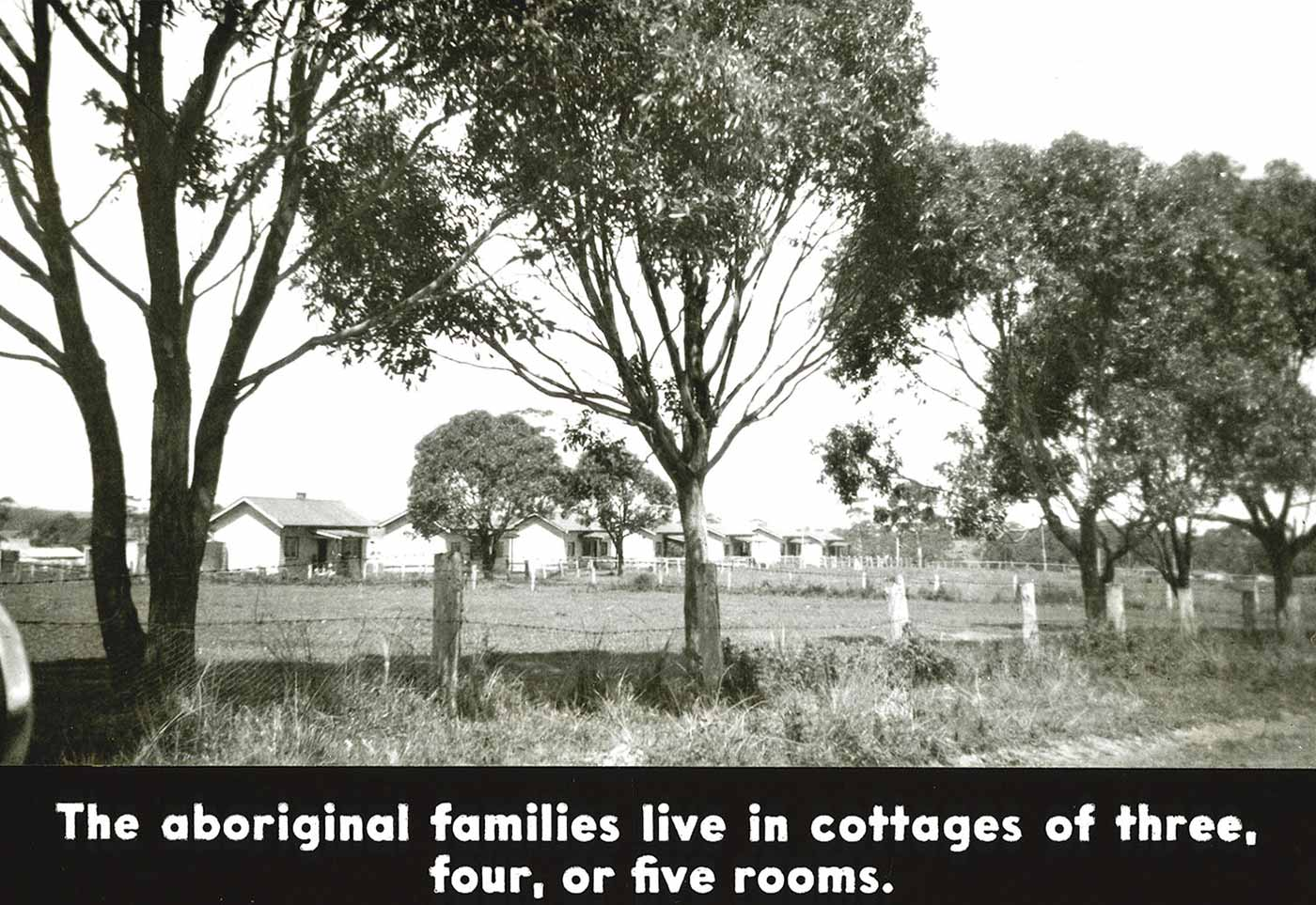 Black and white image of what appears to be a row of weatherboard cottages in a rural setting.